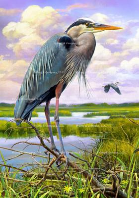 GREGCO 440 Great Blue Heron